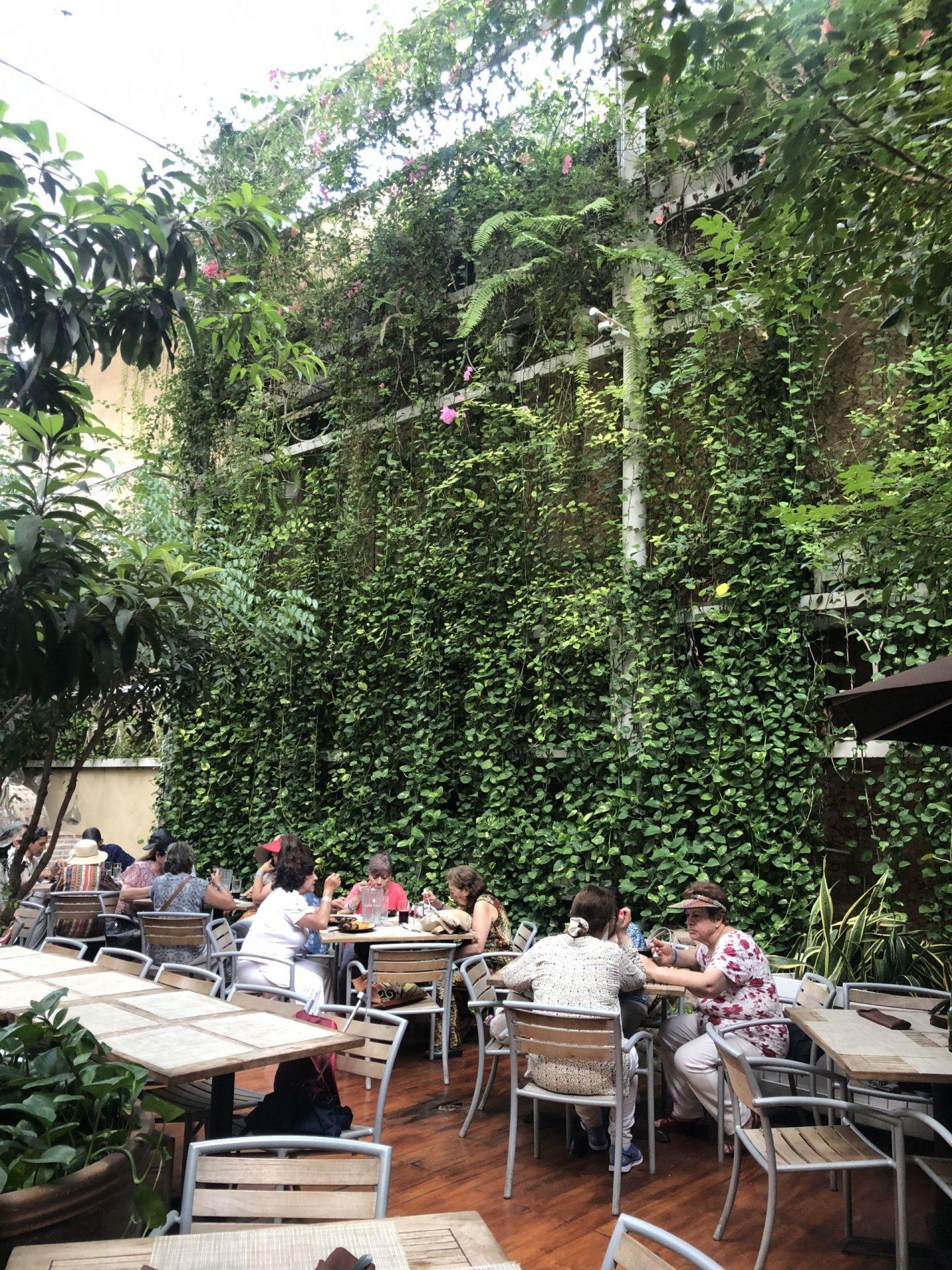 Where to eat in Santo Domingo: Buche Perico